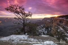 Blazing Canyon